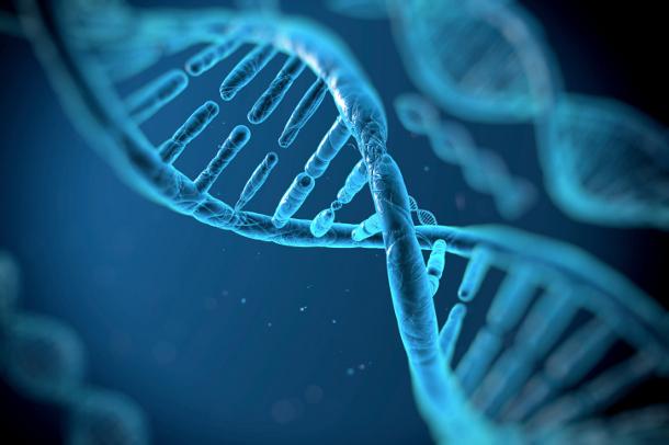 091214_200443_00793_2 Нобелевскую премию по химии вручат за изучение механизма починки ДНК
