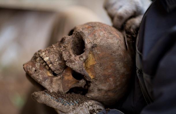 0_a5fd4_bd0c8510_xl В доисторическом черепе нашли неповрежденный человеческий мозг