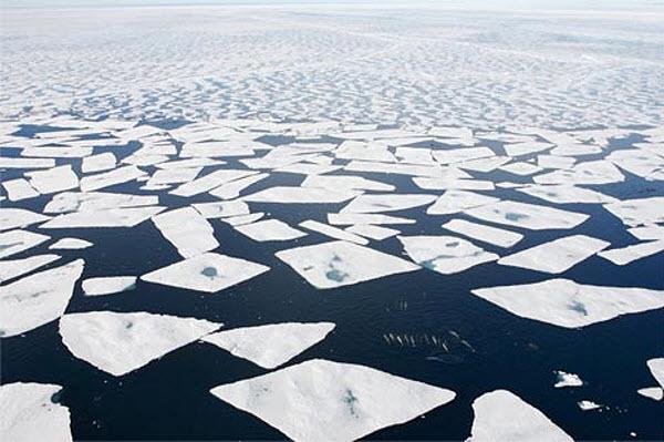 1104 Арктика распрощается с ледяным покровом к 2019-ому?