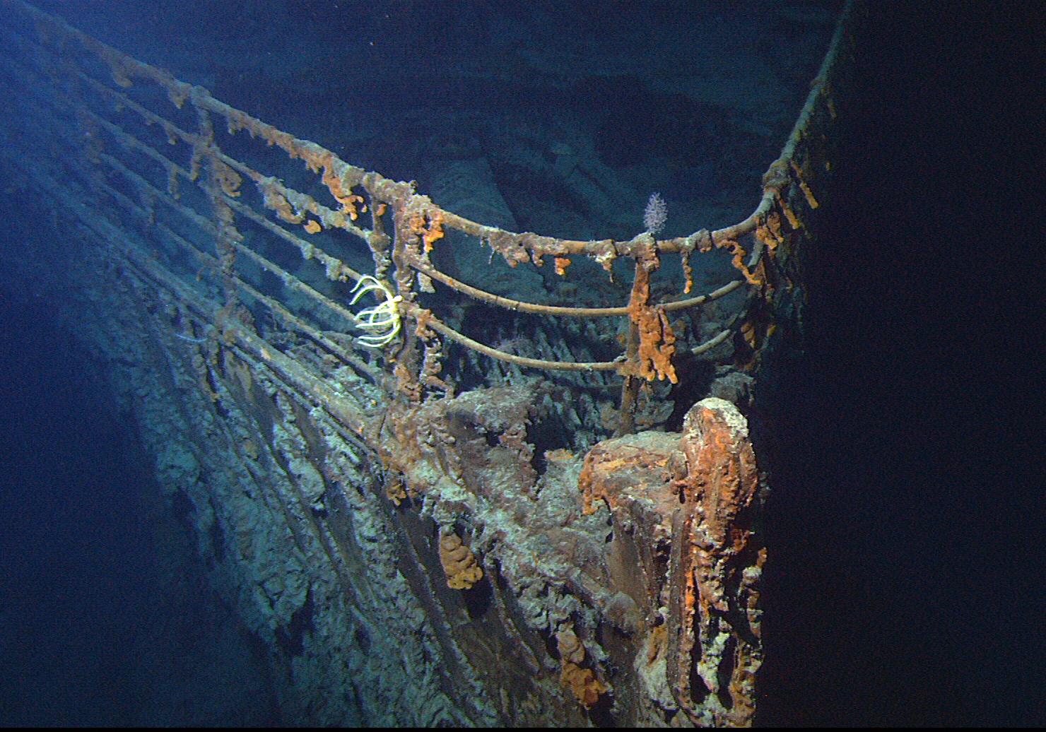 1145 Благородство при кораблекрушении - только миф?