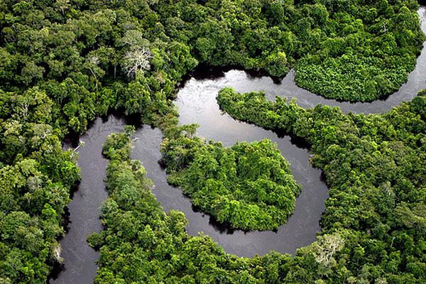 116 Под Амазонкой второй реки нет, хотя вода там есть
