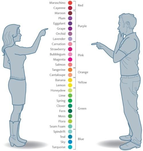 1164 Мужчины и женщины видят мир по-разному