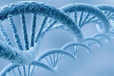 Генетики научились предотвращать глухоту, передаваемую по наследству
