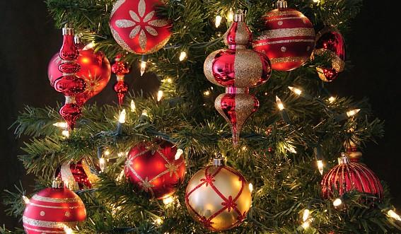 1225 Британцы вывели формулу идеальной новогодней елки