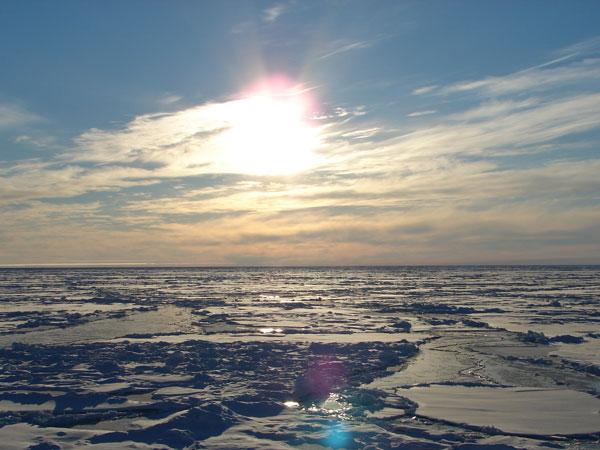 1250 Снегопады, обрушившиеся на Европу, - следствие таяния арктических льдов