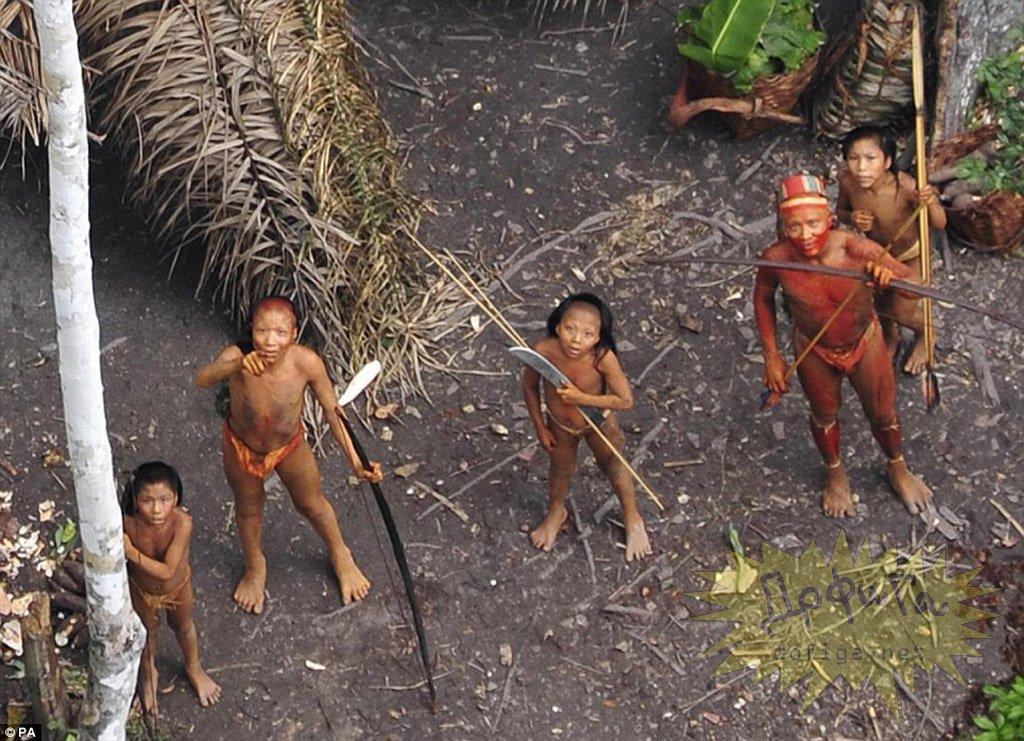 1296619056_005_142647 Последнее племя дикарей вступило в контакт с цивилизацией