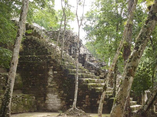 1332 В джунглях нашли затерянный город майя