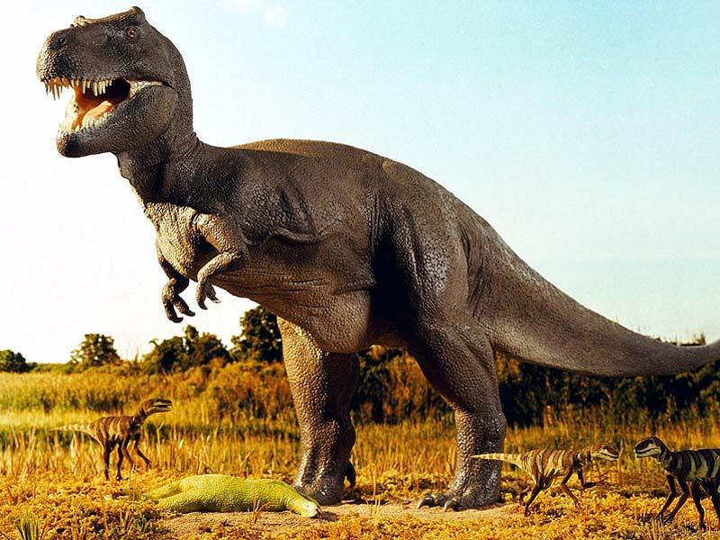 1354 Биологи предсказывают новую эру динозавров