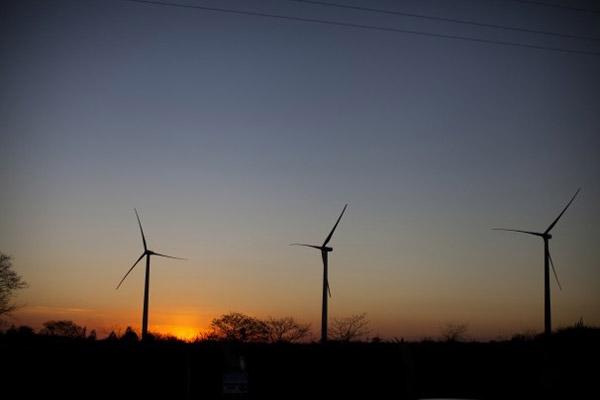1401 Бразилия развивает ветроэнергетику
