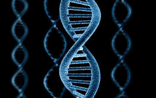 1420 Ученые научились незаметно редактировать геном