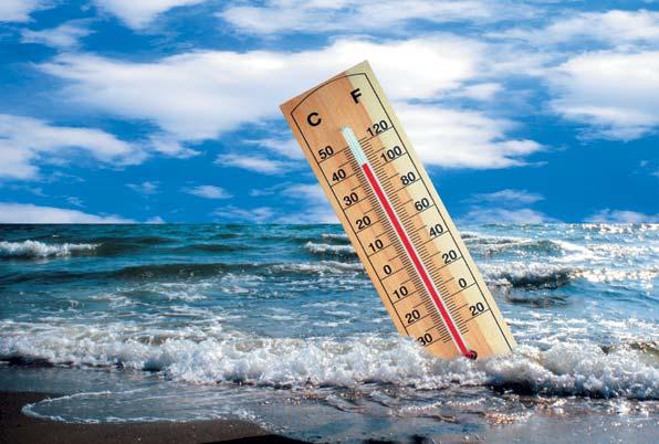 177 Климатологи предсказывают: уровень мирового океана может подняться на 20 метров