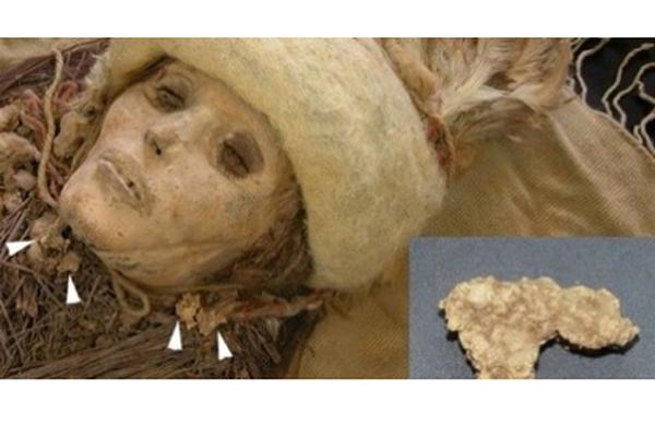 211 Древнейший сыр оказался родственником мягких кефирных сыров