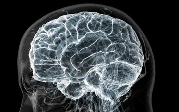 2904 Уставший мозг способен частично отключать нейроны