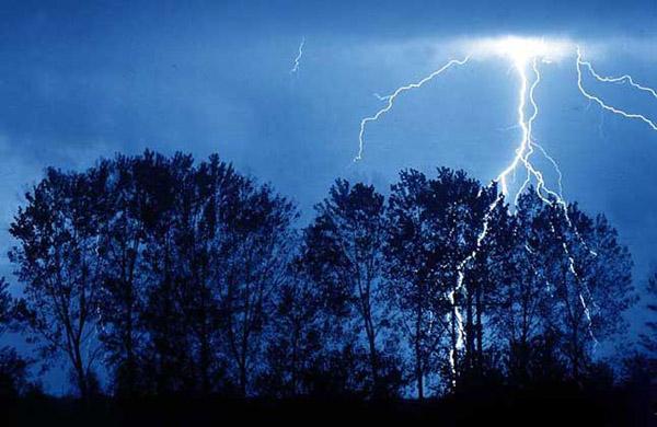 518 Синоптики научились предсказывать погоду, наблюдая за молниями