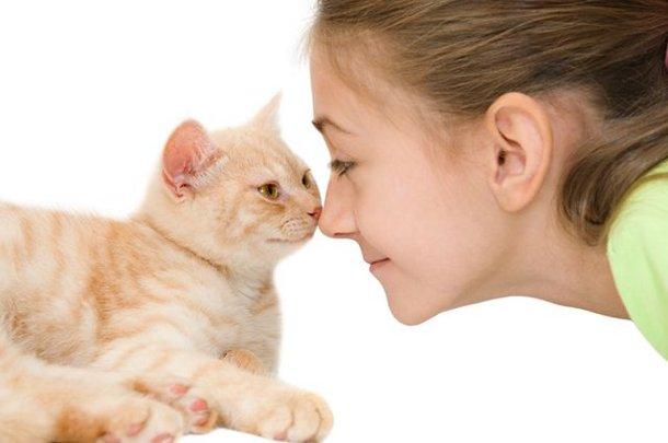 569feec9ebf5fb1aa1523f7699b416ba ТОП-5 домашних животных, которые могут лечить людей