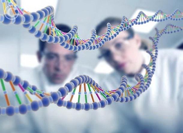 73468 Часть генов люди получили от грибов и вирусов