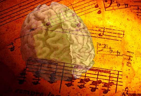 77 МРТ мозга предскажет, какая песня станет хитом