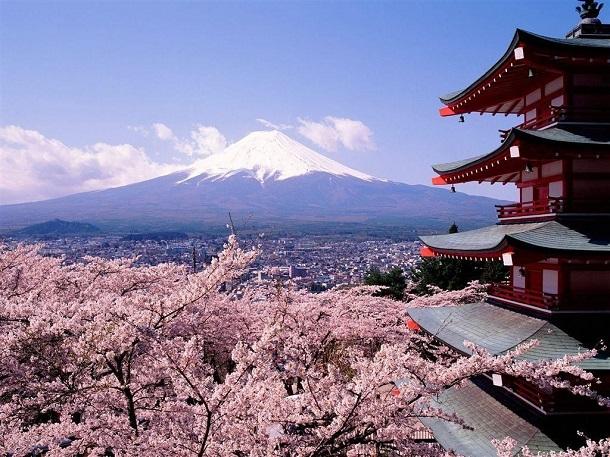 802234_xlarge В ближайшие 100 лет Япония может исчезнуть с лица Земли