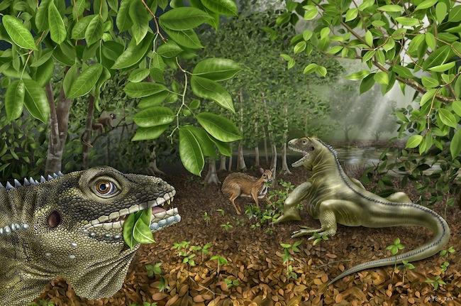 819 Древнюю рептилию назвали в честь Джима Моррисона