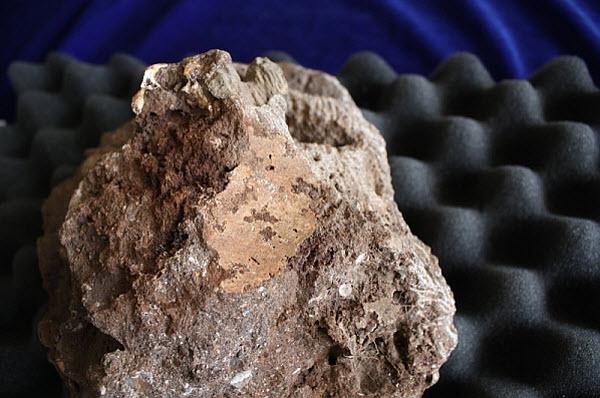 841 ТОП-5 интересных археологических открытий 2011 года