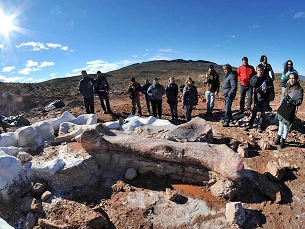 8b0df41c772020f66ca93bb42297c32c Палеонтологи обнаружили окаменелости гигантского динозавра