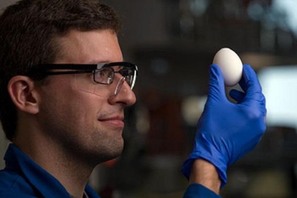 8c765c8003469ab65bb24b27d8c82bb2 Ученым удалось вареное яйцо сделать снова сырым
