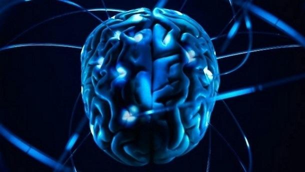 8cda1e3ea5e2b826fc17630f91dbe732 Ученые научились передавать через Интернет сигналы из мозга одного человека в мозг другого