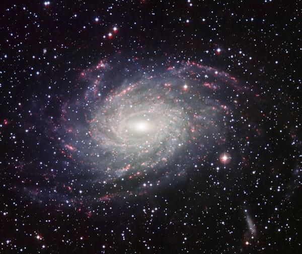 913 Учёные нашли аналог годичных колец у галактик