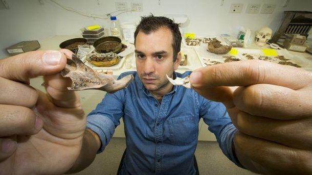 ah1p2398 Антропологи обнаружили останки древних гигантских крыс