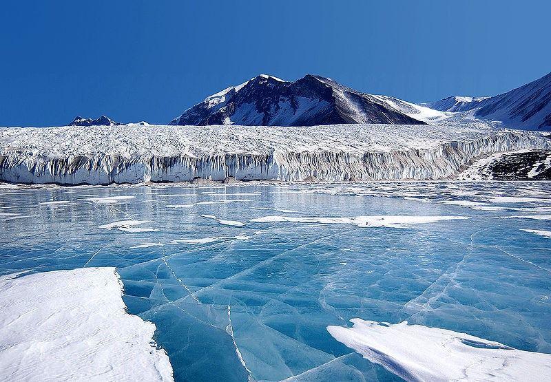 antarktida_5 Ученые обнаружили уникальную спобность антарктических микробов обмениваться своим ДНК