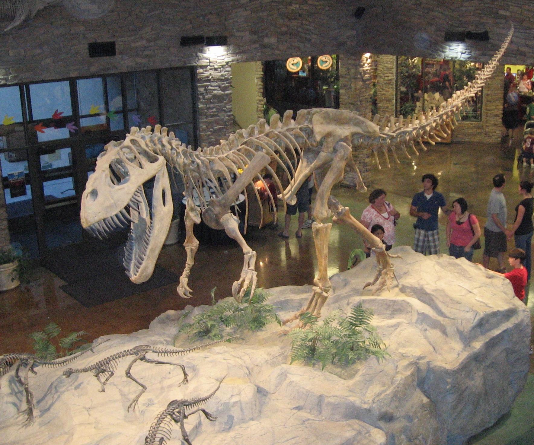 b977b85fd4ed56227c09987767b12578 В Португалии открыли новый вид хищных динозавров
