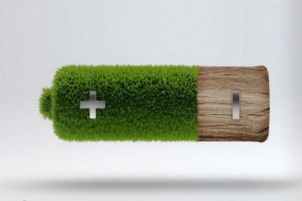 batarejki Американские ученые научились делать аккумуляторы из дерева