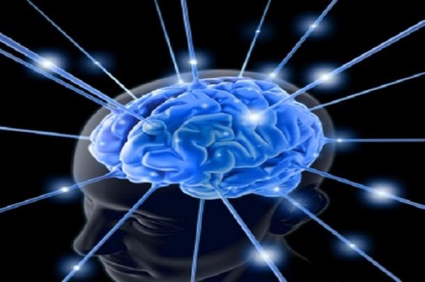brain-763982-11-e1337667575334 Ученые научились предсказывать будущее человека