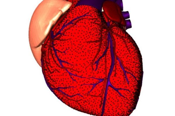 cth Умеренное потребление чистого спирта защитит сердце?