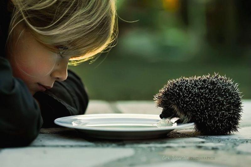 Доброта может передаваться от родителей к детям