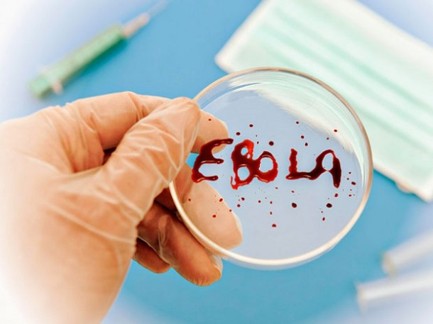 ebola1 Некоторые люди имеют иммунитет против вируса Эбола