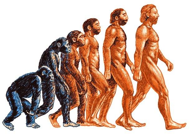 evol Каким станет человек в будущем?