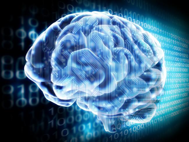human_brains-650x487 Основатель Tesla Motors решил связать мозг человека с компьютером