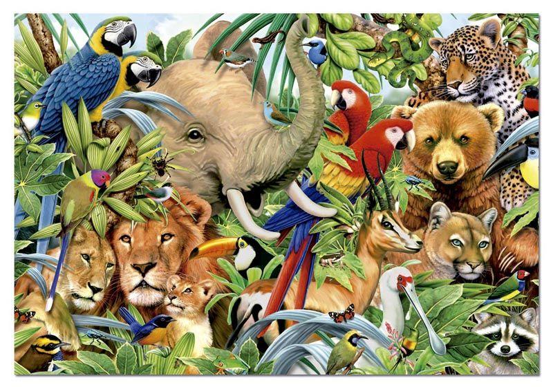 image_1057 Треть живых существ на Земле оказалось на грани вымирания