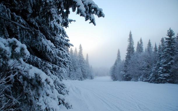 luxfoncom_18995 Грядущая зима может стать самой холодной за последние 5 лет