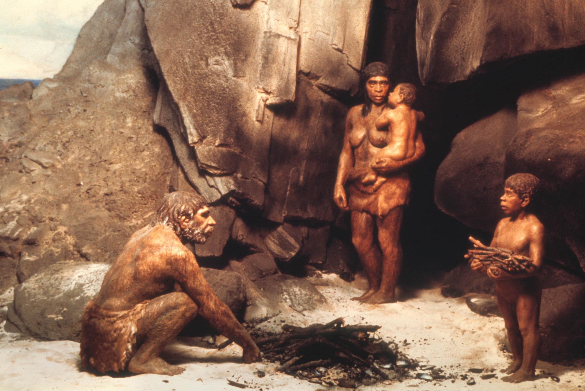 neanderthals_7_20130806_2024672951 Предложена новая версия причины вымирания неандертальцев