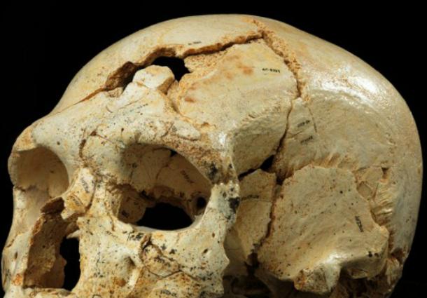xw_970950 Первое в истории человечества убийство состоялось около 430 тысяч лет назад